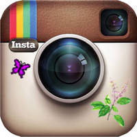 Infinite Holy Basil Tulsi Instagram icon